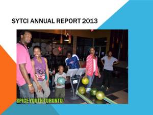 SYTCI ANNUAL REPORT 2013